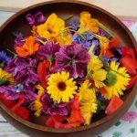 Lunch met eetbare bloemen
