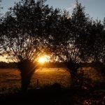 De zon komt op